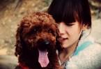 20 фактов об отношении китайцев к собакам