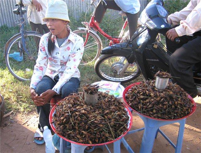 Китайцы продают тараканов на улицах