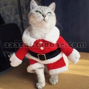 Костюм Санты для кота с руками. Таобао
