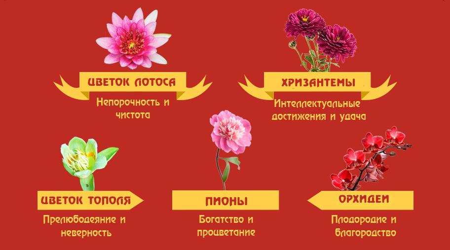 Цветы для подарков китайцам