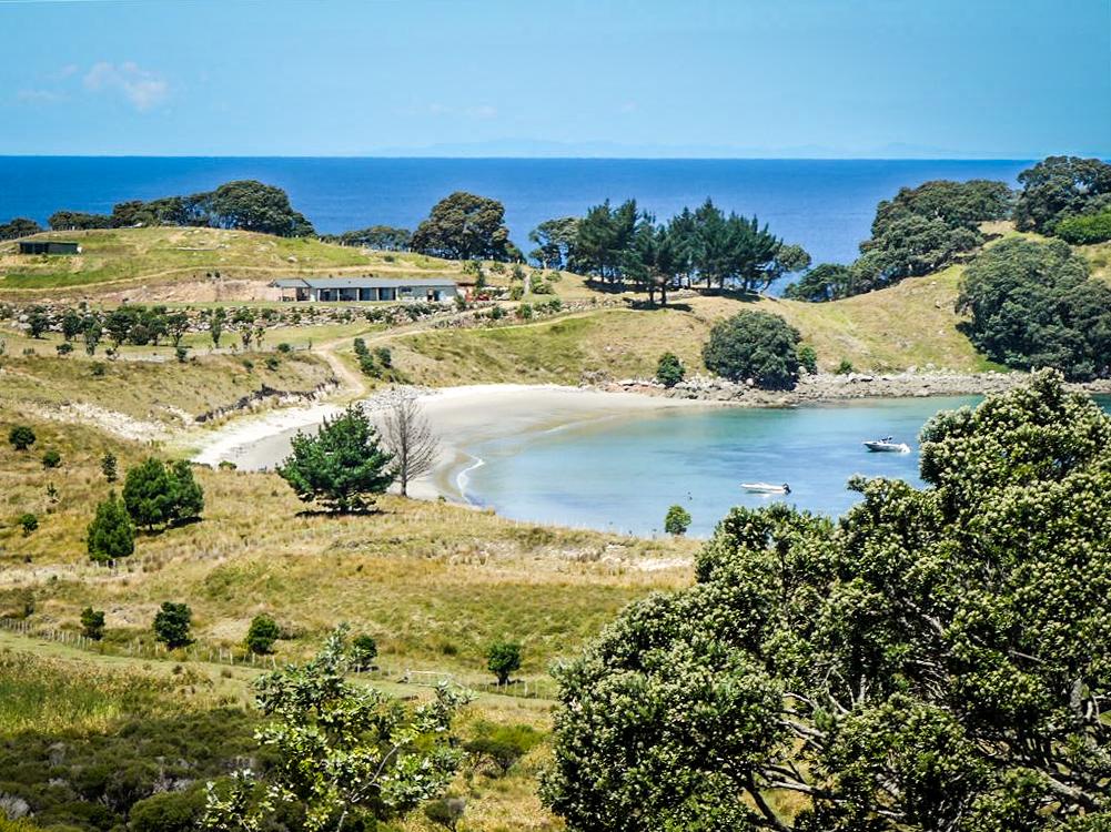"""Раньше """"дикий"""" отдых на острове стоил от 200 до 700 долларов за ночь. Источник: harcourts.co.nz"""