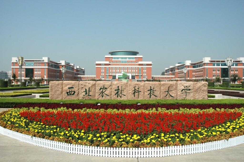 Северо-западный университет Китая Источник: www.sicas.cn
