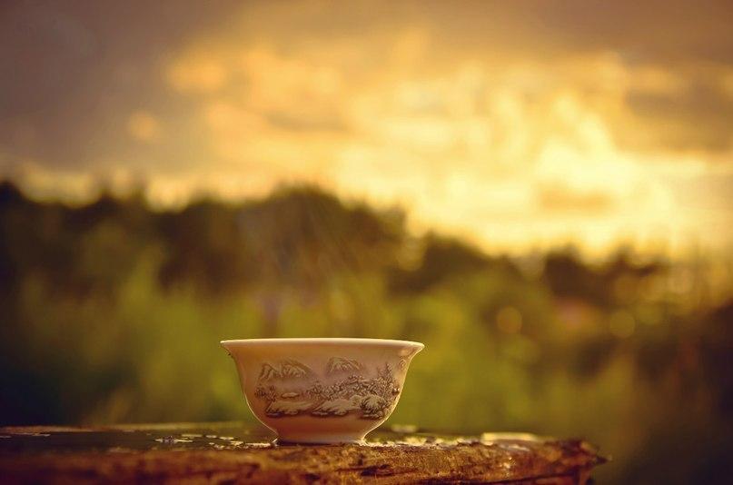 Теплая вода в чашке