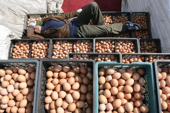 Продажа поддельных яиц в Китае