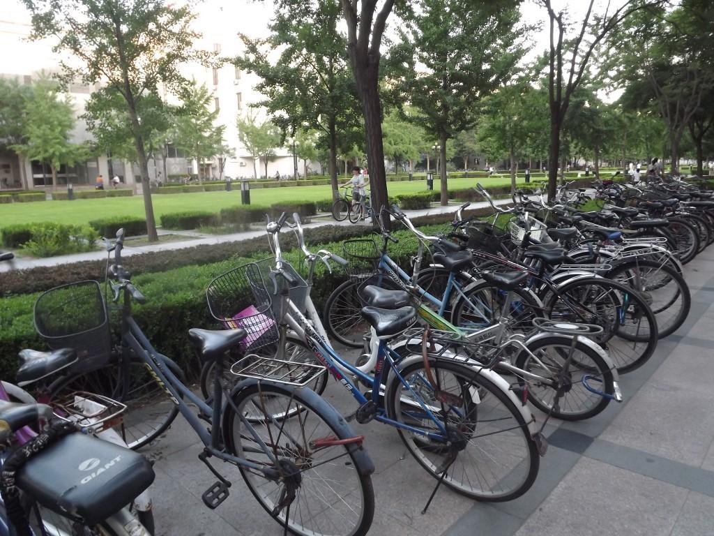 воспользоваться велосипедом в любой точке университета