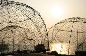 Местные жители-китайцы каждое утро выходят в море, чтобы к обеду наловить свежей рыбы для приезжающих туристов. Источник: timeouthk.com
