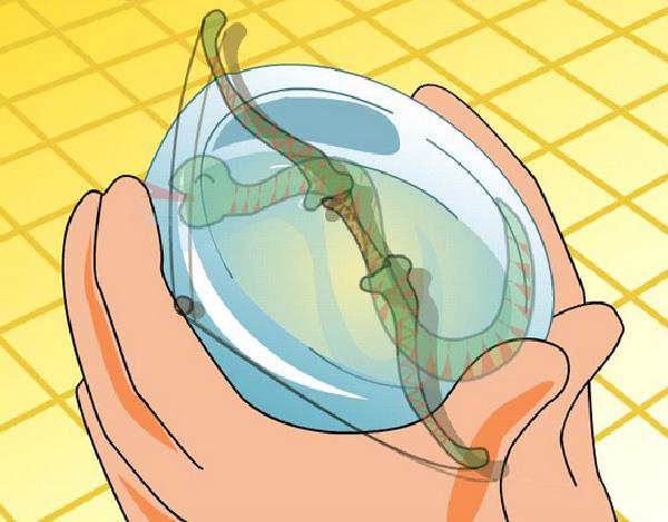 Древняя китайская история про змею и чашку. Источник: www.china.org.cn