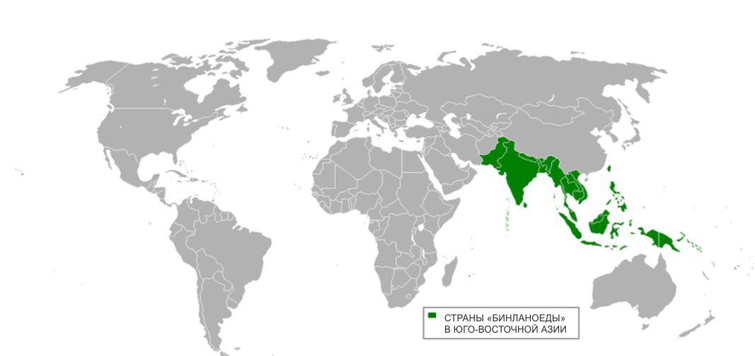страны, где жуют бинлан