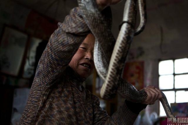 Ван Гуйжэнь с любимой змейкой