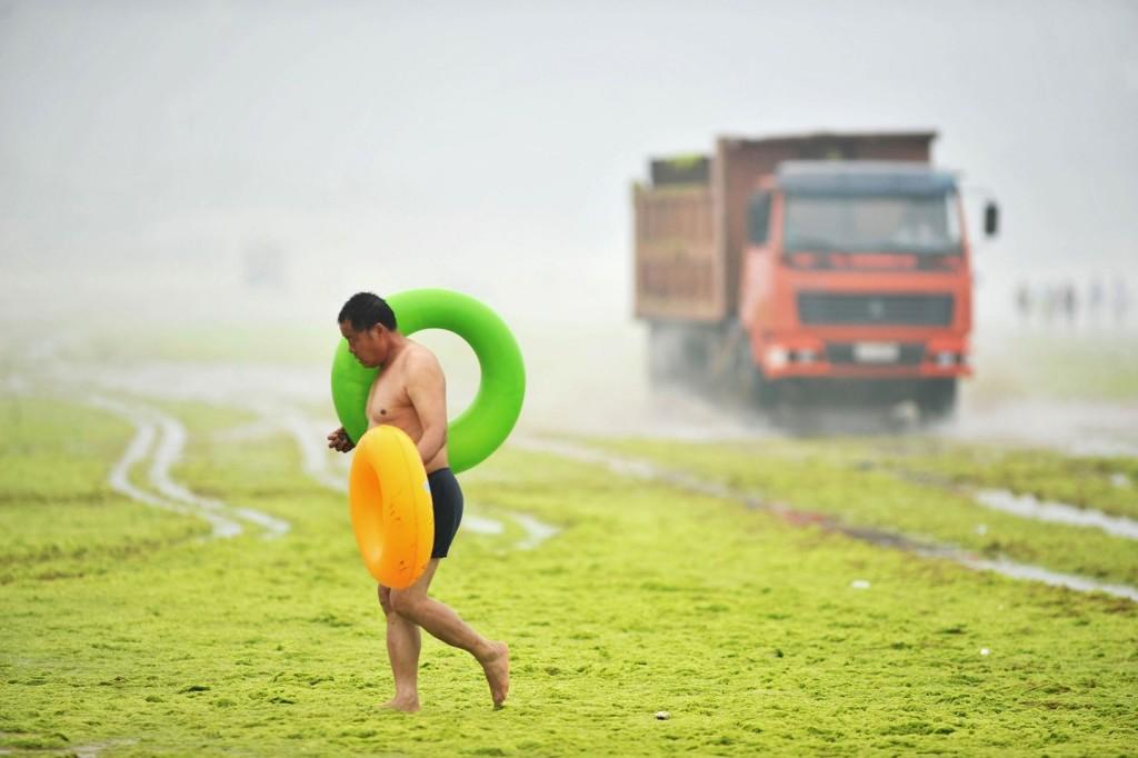Местным водоросли плавать не мешают. Источник: mashable.com