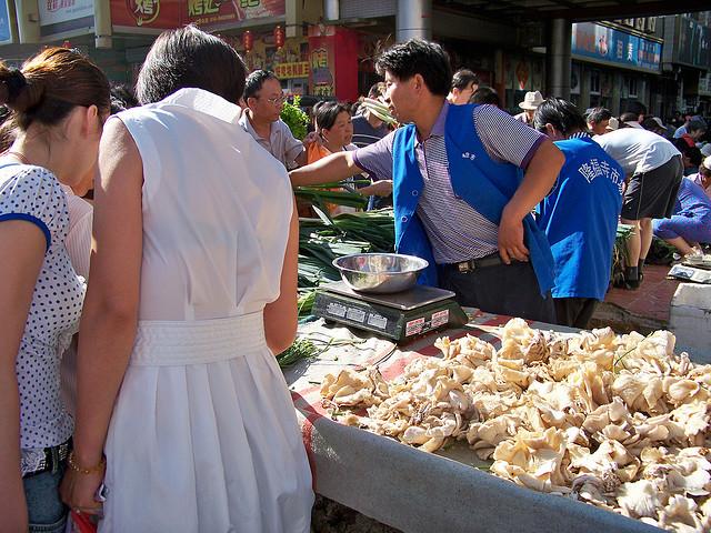 Грибы часто обрабатывают пестицидами. Источник: www.asianews.it