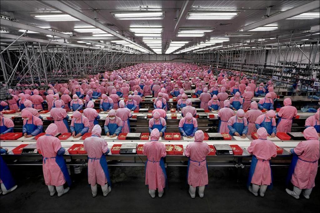 Рабочие китайского завода