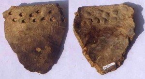 Остатки пароварки, обнаруженные при раскопках археологами Гарварда. Ей около 20 тысяч лет. Источник: bostonglobe.com