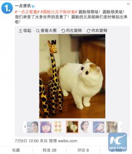 Один из пользователей для убедительности запостил эту картинку. Источник: news.xinhuanet.com