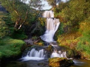 Тут чудом сохранились девственные места. Источник: 74211.com