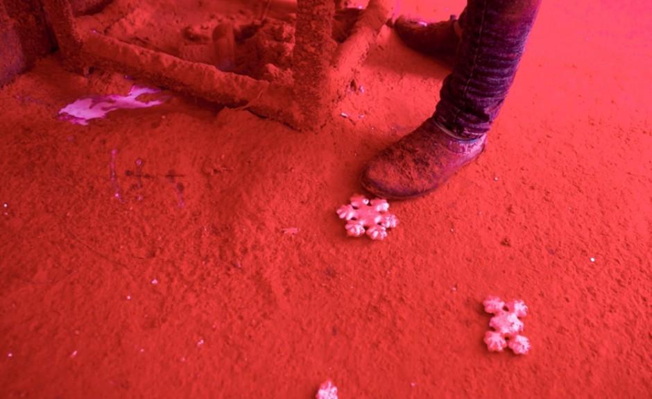 Кровь китайских снежинок