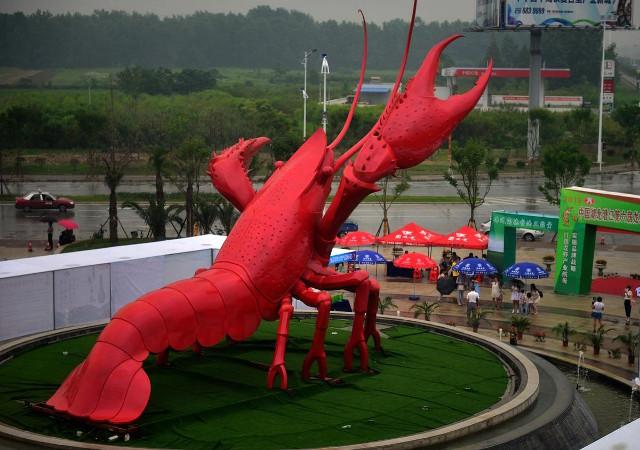 15-метровый лобстер в Китае! Такого мир еще не видел! Фото: shanghaiist.com