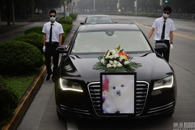 pet_funeral11 (1)