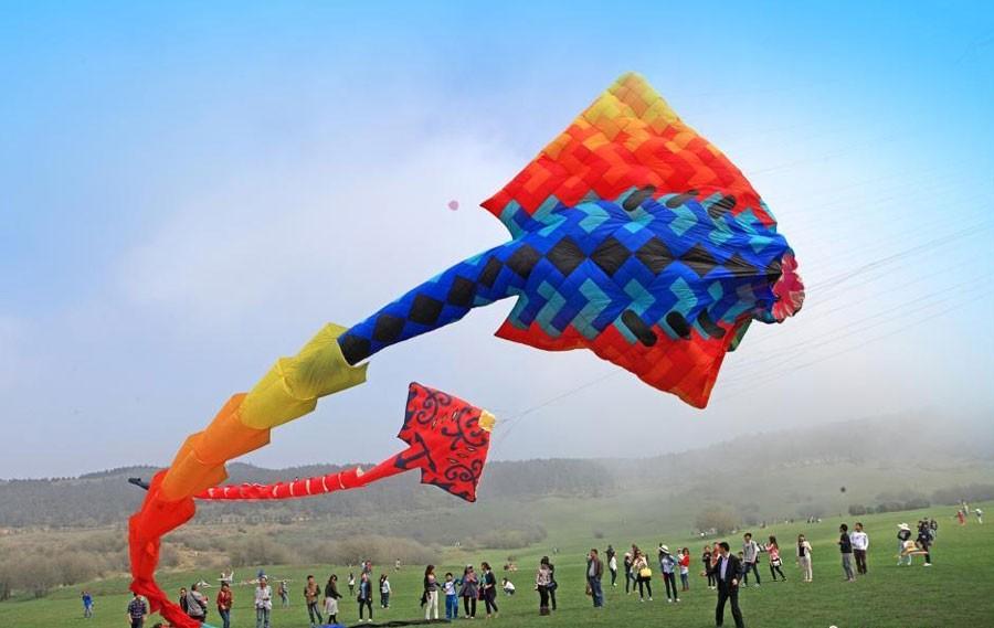 Самый длинный воздушный змей создали в Китае. Фото: chinadaily.com.cn