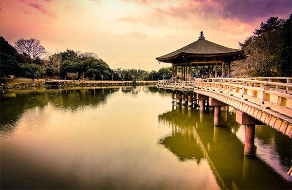 В Японии и своих садов достаточно, но этот - особый дар акт дружбы со стороны Китая. Фото: theworldofchinese.com