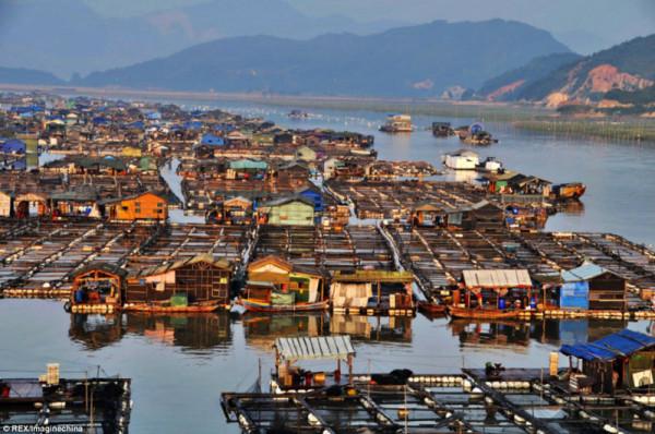 Китайская плавучая деревня. Фото: visiontimes.com