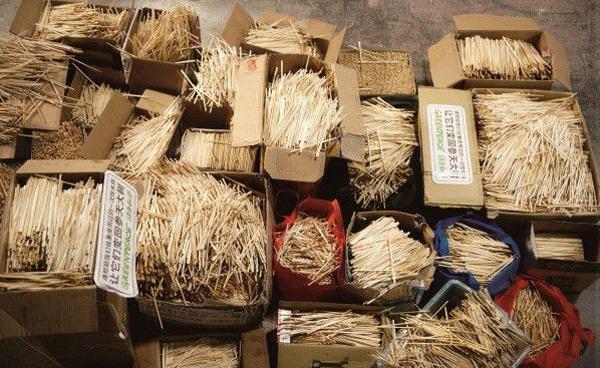 В Китае срубают 20 миллионов деревьев каждый год, чтобы изготовить 80 миллиардов пар палочек. Фото: https://enterchina.ru/