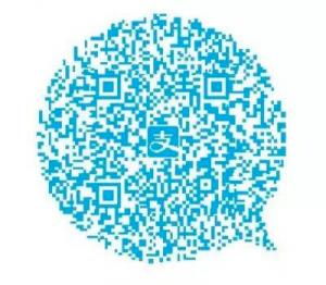Тот самый QR-код помощи в Alipay App