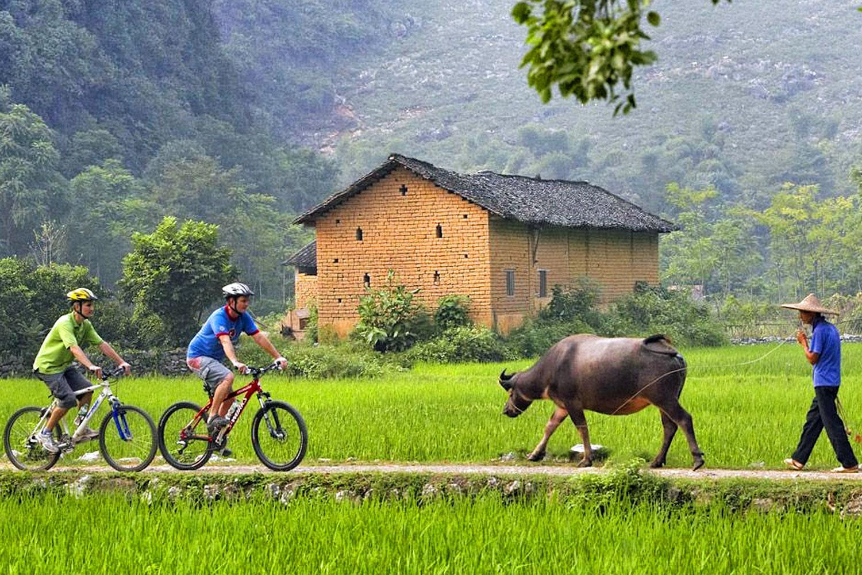 В Китае кого только не встретишь по пути! Фото: adventurecycling.org