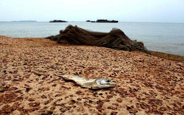 Бермудский-треугольник Востока-—-китайское-озеро-Поян