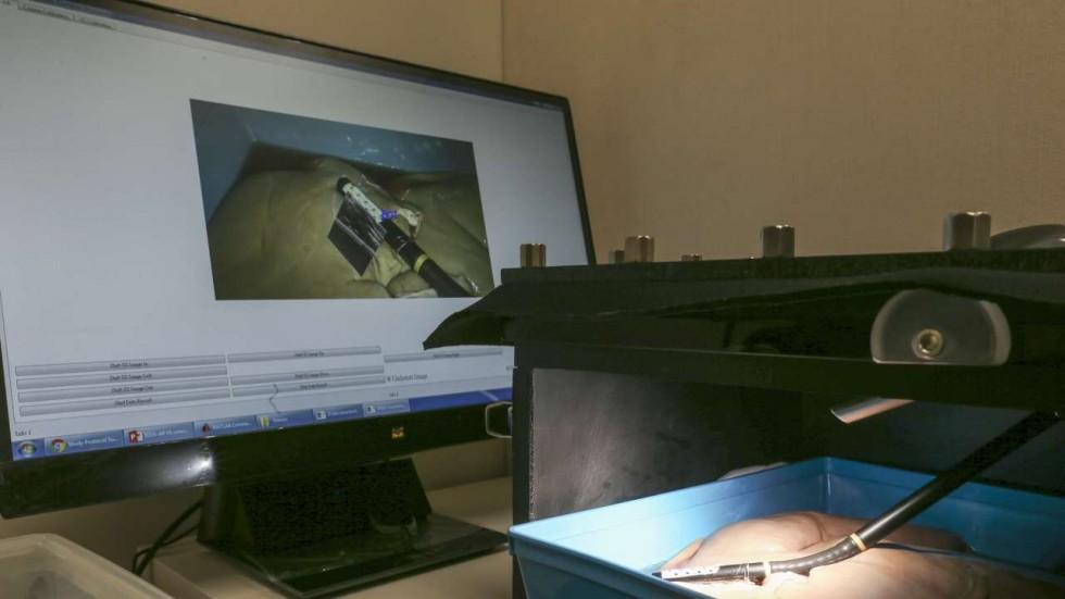 Фото с сайта scmp.com